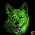 Green Shiba Inu Dog Art - 8555 - Bb by James Ahn