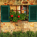 Green Shutters And Window In Chianti by Greg Matchick