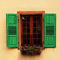 Green Shutters In Niedermorschwihr France by Greg Matchick