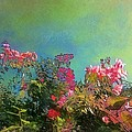 Green Sky With Pink Bougainvillea - Square by Lyn Voytershark