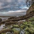 Green Stone Shore by Jon Glaser