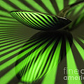 Green Stripes by Claudia Kuhn