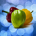 Green Sweet Pepper - Square - Textured by Alexander Senin