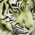 Green Tiger by Summer Celeste