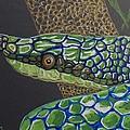 Green Tree Snake by Richard Goohs