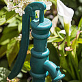 Green Water Pump by Garry Gay