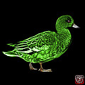 Green Wigeon Art - 7415 - Bb by James Ahn