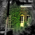 Green Window by Salman Ravish