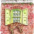 Green Window by Carlos G Groppa