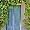 Green Wood Door Of Tuscany by David Letts