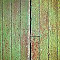 Green Wood by Tom Gowanlock