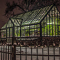Greenhouse In Winter #2 by Ray Congrove
