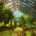 Greenhouse - Paradise Under Glass  by Mike Savad