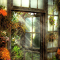 Greenhouse - The Door To Paradise by Mike Savad