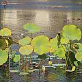 Greens On A Pond 3 by Mark Steven Burhart