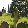 Greenwood Cemetery by Philip Ralley