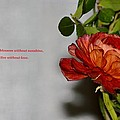 Greeting Of Love by Sonali Gangane