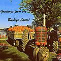 Greetings From The Buckeye State by Kathy Barney