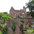 Grey Abbey Cemetery by Nancy L Marshall