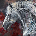 Grey Andalusian Horse Oil Painting 2013 11 26 by Angel Ciesniarska