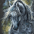 Grey Arabian Horse Oil Painting 2 by Angel Ciesniarska