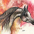 Grey Arabian Horse On Red Background 2013 11 17  by Angel Ciesniarska