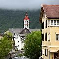 Grey Day In Switzerland  by Elizabeth-Anne King