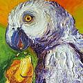 Grey Parrot And Juicy Mango by Paris Wyatt Llanso