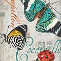 Grey Postcard Butterflies 2 by Debbie DeWitt