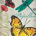 Grey Postcard Butterflies 3 by Debbie DeWitt