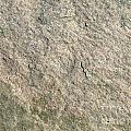 Grey Rock Texture by Antony McAulay