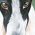 Greyhound Eyes by Leslie Manley