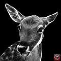 Greyscale Deer - 0401 F by James Ahn