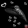 Greyscale Hummingbird - 2055 F M by James Ahn