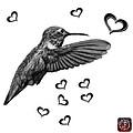 Greyscale Hummingbird - 2055 F S M by James Ahn