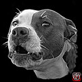Greyscale Pitbull Dog 7769 - Bb - Fractal Dog Art by James Ahn