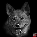 Greyscale Shiba Inu Dog Art - 8555 - Bb by James Ahn