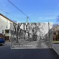 Greystone Avenue In North Providence Rhode Island by Jeff Hayden