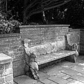 Griffin Bench by Katie Beougher