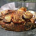 Grilled Pirana by Carol Ailles