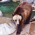 Grizzly by Photographic Art by Russel Ray Photos