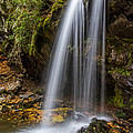 Grotto Falls Great Smoky Mountains by Pierre Leclerc Photography