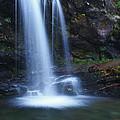 Grotto Falls Great Smoky Mountains by Shari Jardina