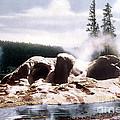 Grotto Geyser Yellowstone Np by NPS Photo Frank J Haynes