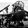 Grumman Ea-6b Prowler B-w by Tim Beach