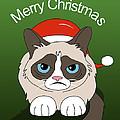 Grumpy Cat by Mark Ashkenazi