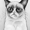 Grumpy Cat Portrait by Olga Shvartsur