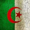 Grunge Algeria Flag by Steve Ball