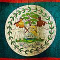 Grunge Belize Flag  by Steve Ball
