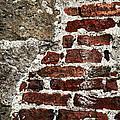 Grunge Brick Wall by Elena Elisseeva